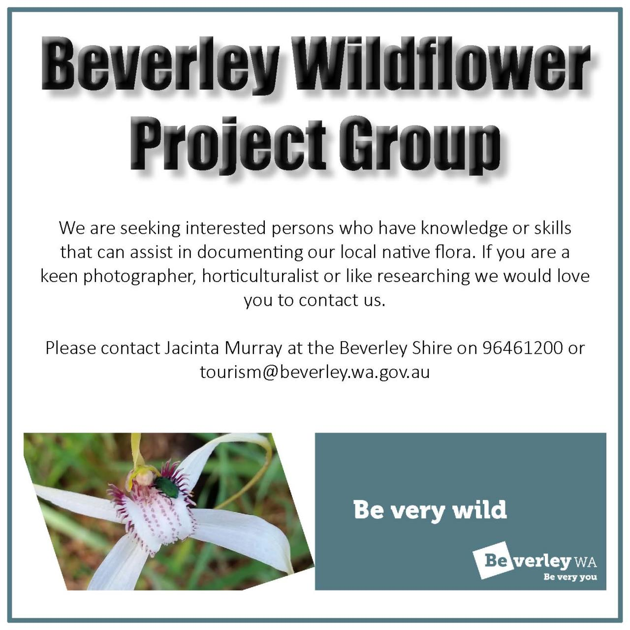 Wildflower Project